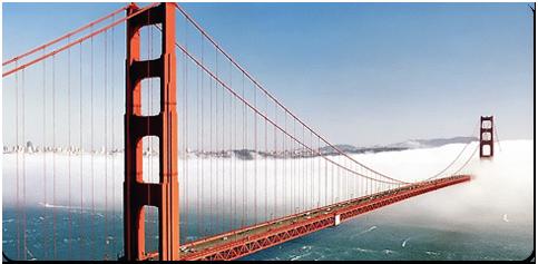 San Francisco City Landmark